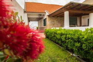 Garten und Terrasse auf der Rückseite der Ferienwohnung