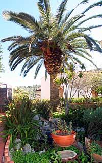 Garten von Casa Angela